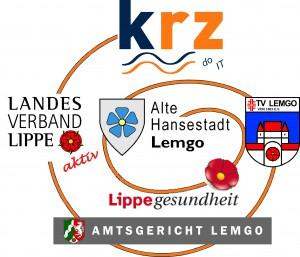 Logo_Gesundheitsnetzwerk_2016